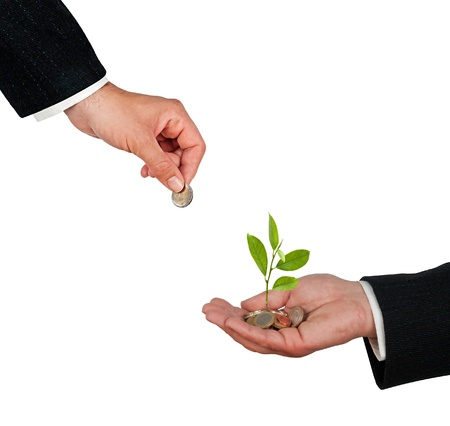 Tree growing from pile of coins Stock Photo - 11835223
