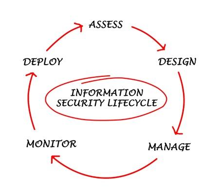 ciclo de vida: Esquema de seguridad de la información del ciclo de vida Foto de archivo