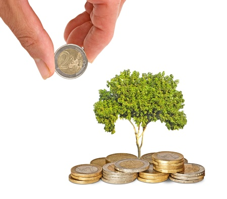 ecological problem: tree growing from coins