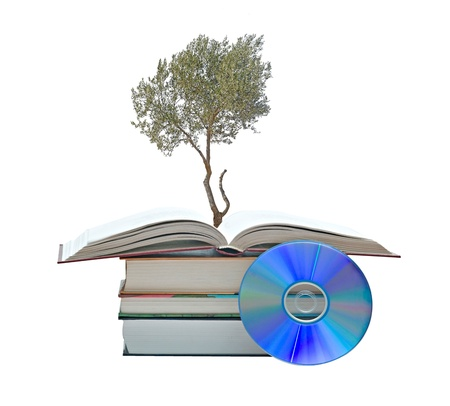 Olive tree growing from books photo