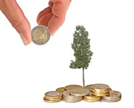 subsidy: Investing to green business
