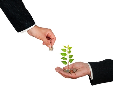 white fund: Palm with a tree growng from pile of coins