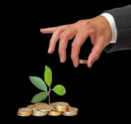 Investing to green business Stock Photo - 12505091