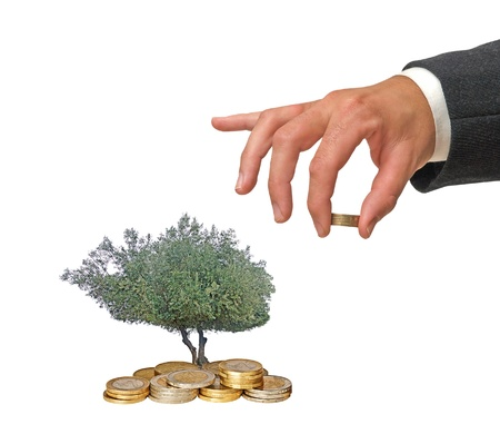 Investment to green business photo