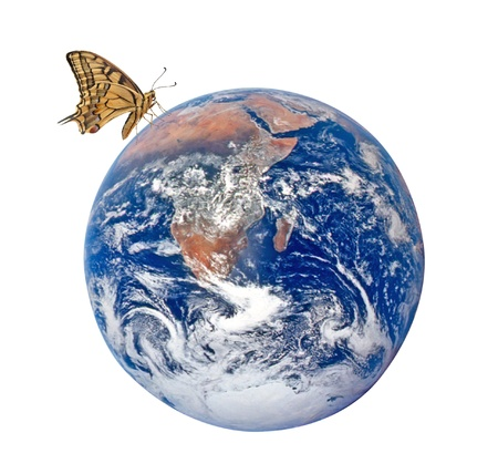 Butterfly on planet Earth Elements of this image furnished by NASA photo