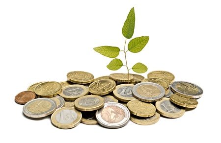 ecosavy: sapling growing from coins Stock Photo