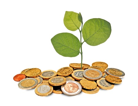 ecosavy:  tree growng from pile of coins