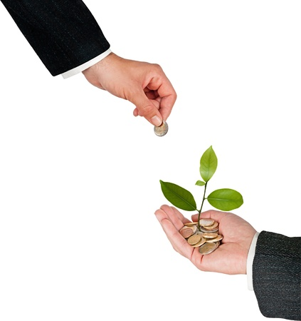 Palm with a tree growng from pile of coins Stock Photo - 12992170