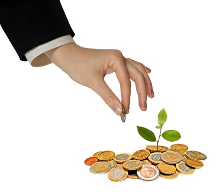 forestation: Investing to green business