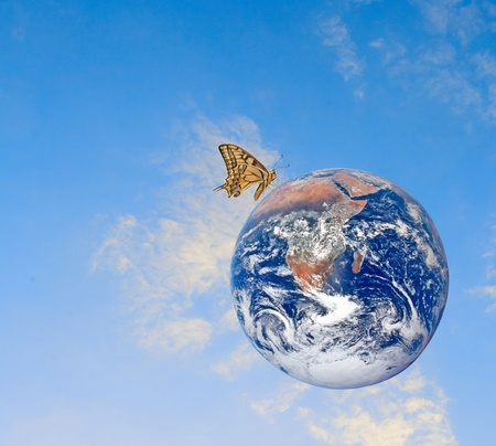 ecosavy: Butterfly on planet Earth.Elements of this image furnished by NASA