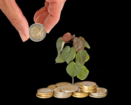 emergent: Investing to green business