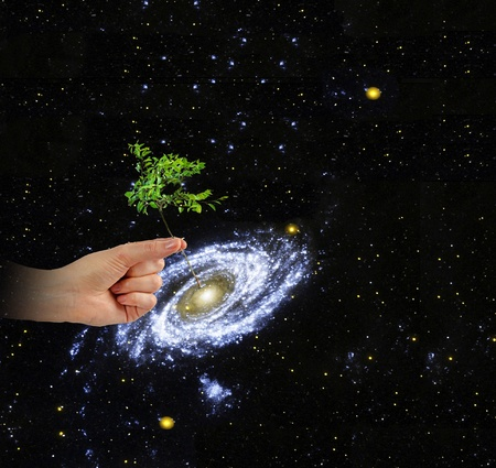 Planting a tree at center of galaxy.Elements of this image furnished by NASA photo