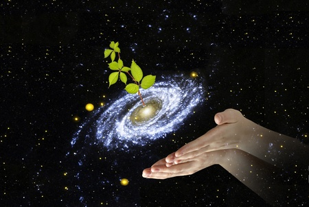 Plant at center of galaxy Elements of this image furnished by NASA photo