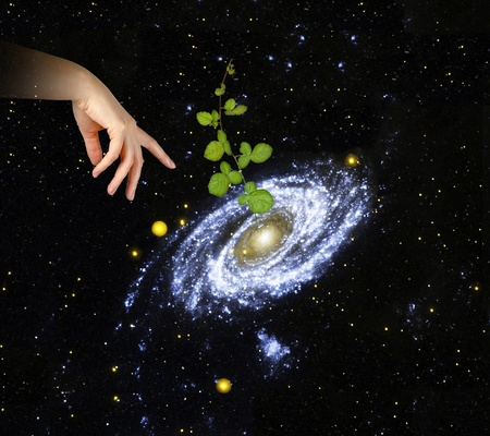 Plant at center of galaxy.Elements of this image furnished by NASA photo