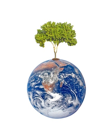 Planet earth as symbol of nature conservation. Stock Photo - 13414443