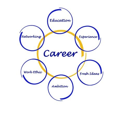 find a job: Diagram of career success