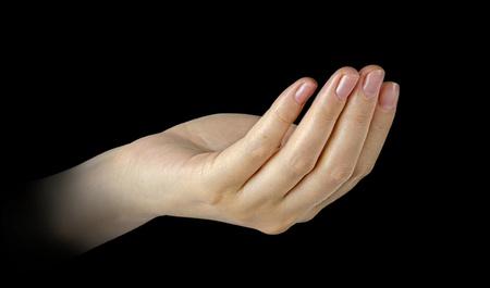 female hand Stock Photo - 13543453