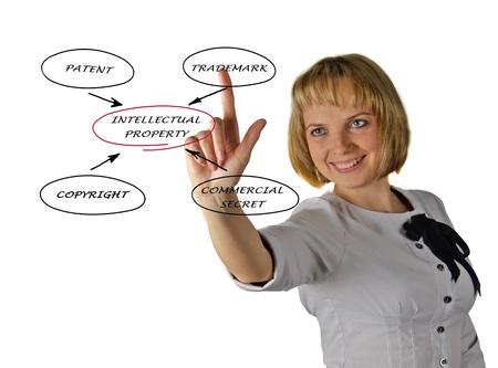 Presentation of diagram of intellectual property Stock Photo - 14734019