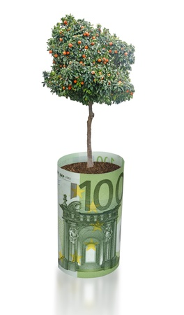 ecosavy: Orange tree growing from euro