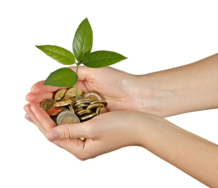 Palms with a tree growng from pile of coins Stock Photo - 14038358