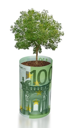 ecosavy:  tree growing from euro bill