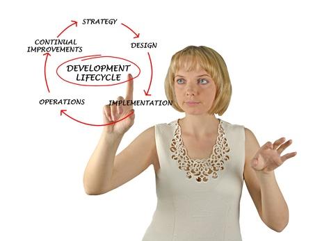 ciclo de vida: Presentaci�n del ciclo de vida de desarrollo