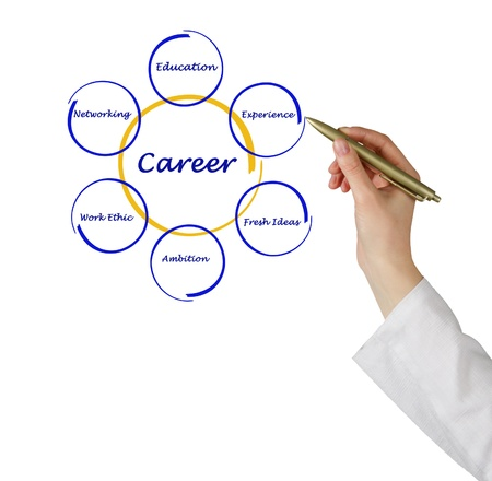 Diagram of career success Stock Photo - 14396607