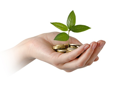 money tree: Woman with sapling in hand Stock Photo
