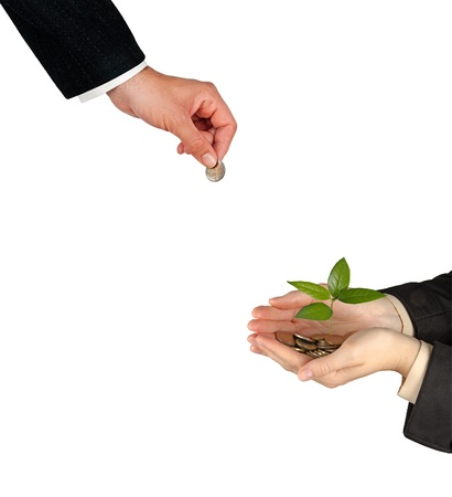 Palms with a tree growng from pile of coins Stock Photo - 14396603