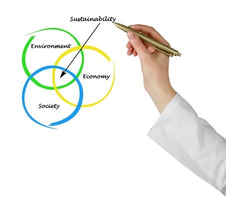 Presentation of diagram of sustainability photo