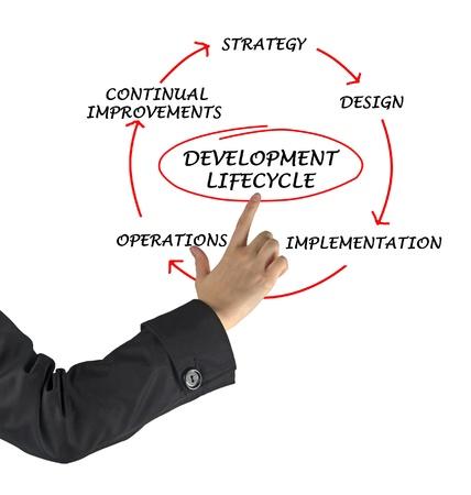 ciclo de vida: Presentaci�n del desarrollo del ciclo de vida