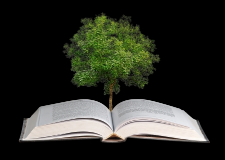 guide book:  tree growing from open book Stock Photo