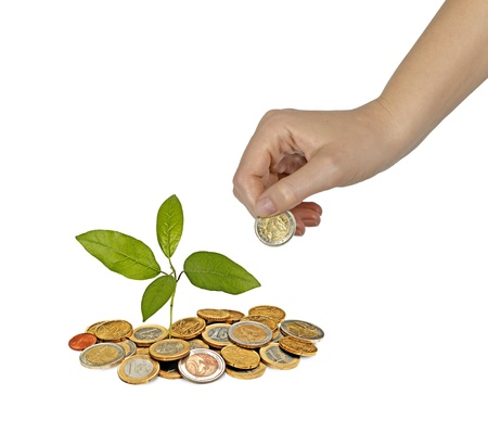 tree growng from pile of coins Stock Photo - 14734098