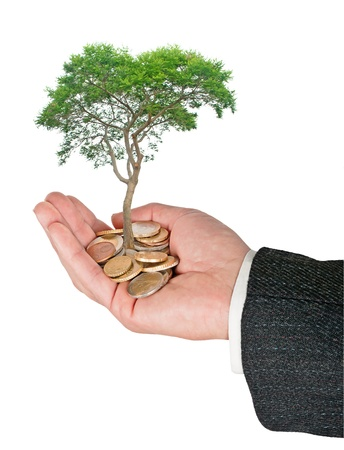 ecosavy: Palm with a tree growng from pile of coins