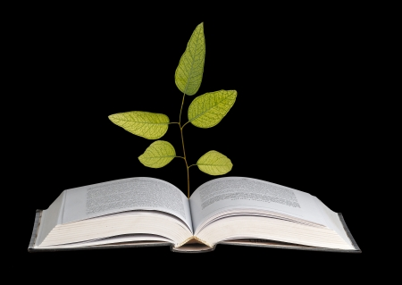 sapling growing from book photo