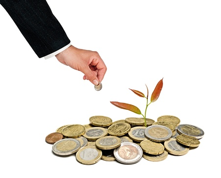 tree growng from pile of coins Stock Photo - 14941998