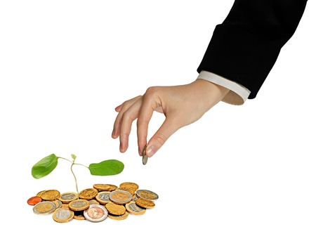 tree growing from pile of coins Stock Photo - 15101514