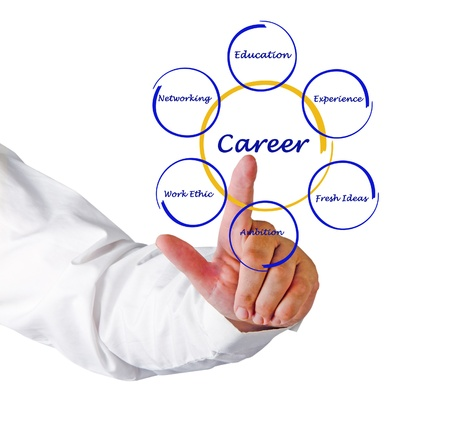 training consultant: Diagram of career success