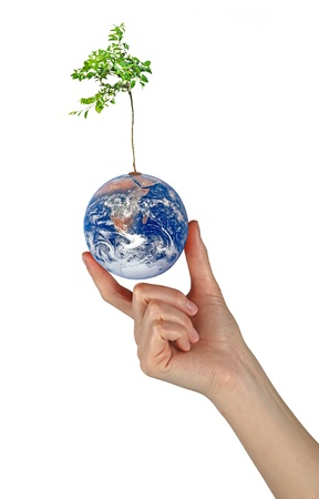 Tree on Earth as a symbol of pease and feeding the world.Elements of this image furnished by NASA Stock Photo - 15101558