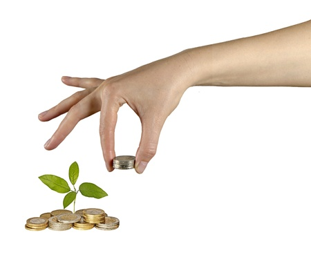 Investing to green business Stock Photo - 15504183