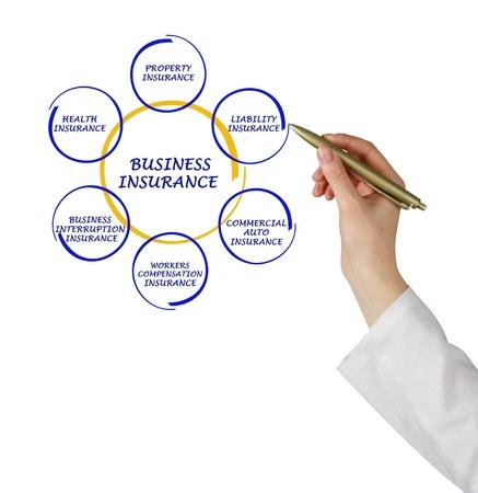 insurer: Diagram of business insurance