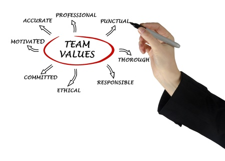 norms:  team values and norms