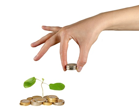 Tree growing from pile of coins Stock Photo - 15765826