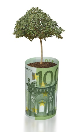 ecosavy: tree growing from euro bill Stock Photo