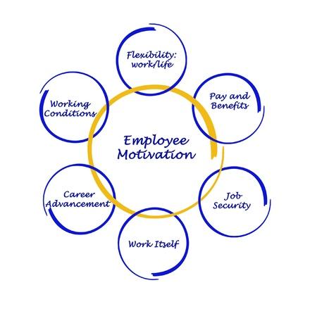 empleados trabajando: Diagrama de la motivaci�n de los empleados