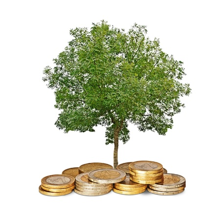 ecosavy: tree growing from coins