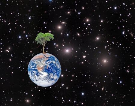 paz mundial: Elementos de la Tierra de esta imagen amueblado Foto de archivo