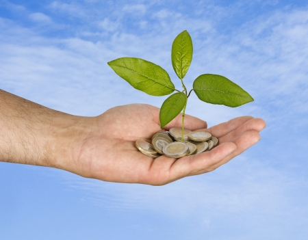Sapling in hand Stock Photo - 16759633