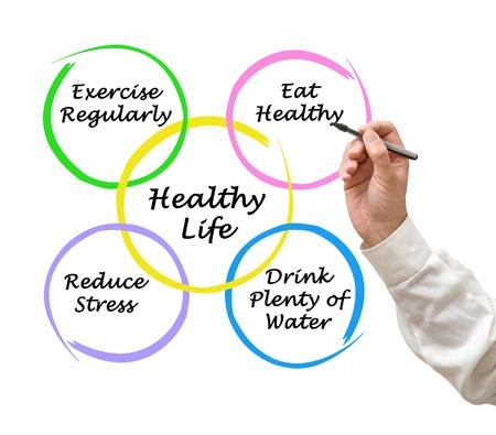 Схема здорового образа жизни