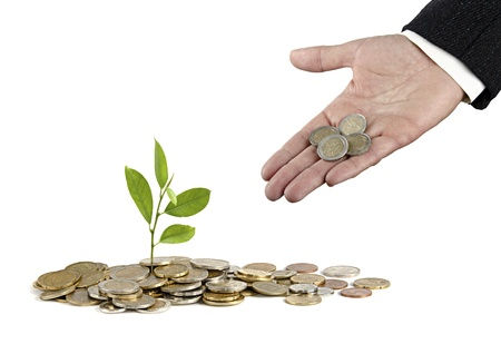 Investing to green business Stock Photo - 17366689